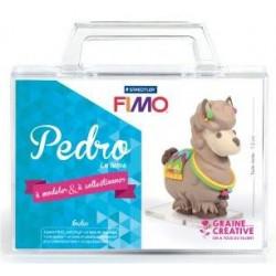 Kit Figurine Fimo Pedro le...