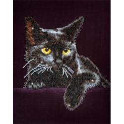 Diamond Dotz Chat noir...