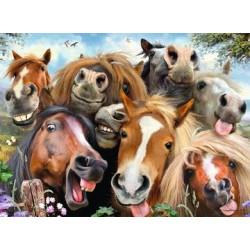 Puzzle Selfie de chevaux...
