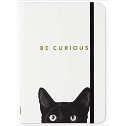 Carnet Be curious Chat