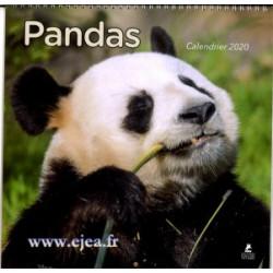 Calendrier 2020 Pandas