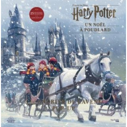 Harry Potter Un Noël à...
