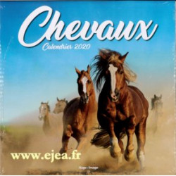 Calendrier Chevaux 2020