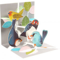 Mini carte pop-up Oiseaux