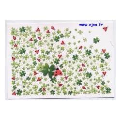 Carte postale Hanra...