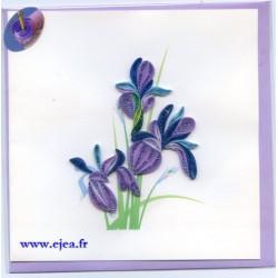 Carte Violettes en papier...