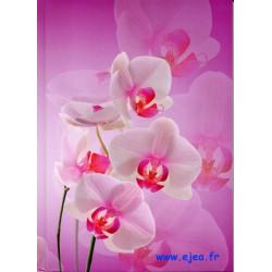 Carnet A5 Fleurs Summertime...