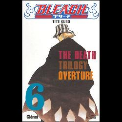 Bleach Tome 6