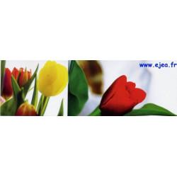 Carte marque-page Tulipes