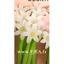 Stylo Fleur Jacinthe blanche