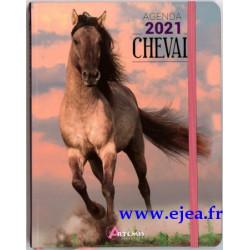 Agenda 2021 Cheval