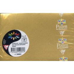 Pollen 20 enveloppes OR...