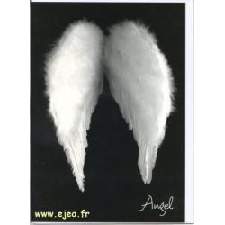 Carte double Kontraste Angel