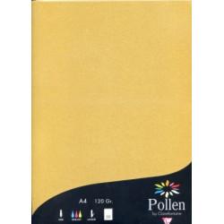 Pollen 50 feuilles A4...