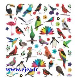 Stickers Classy Oiseaux du...