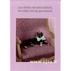 Carte Rétro Fun Les chats...