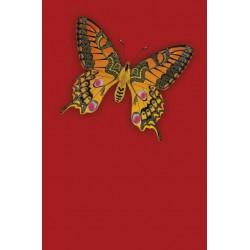 Carte double Icônes Papillon