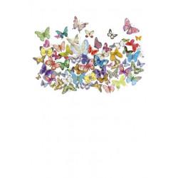 Carte double Icônes Papillons