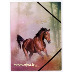 Chemise A4 Cheval Free Horse